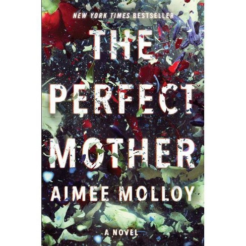 The Perfect Mother Book Spoilers & Ending Synopsis